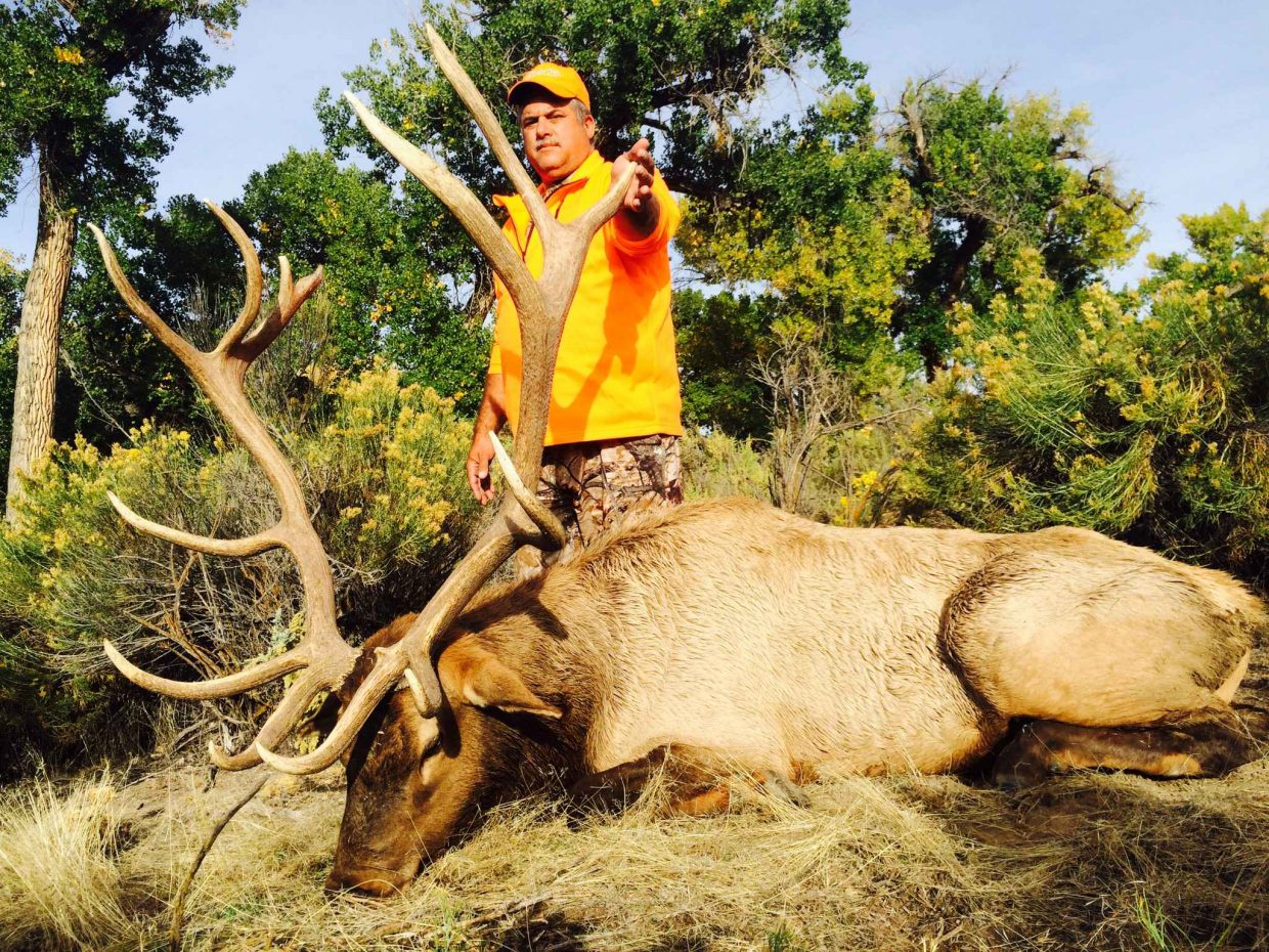 Dan Fortney harvests a bull elk harvested in area 201. It took him 22 years to draw the tag.