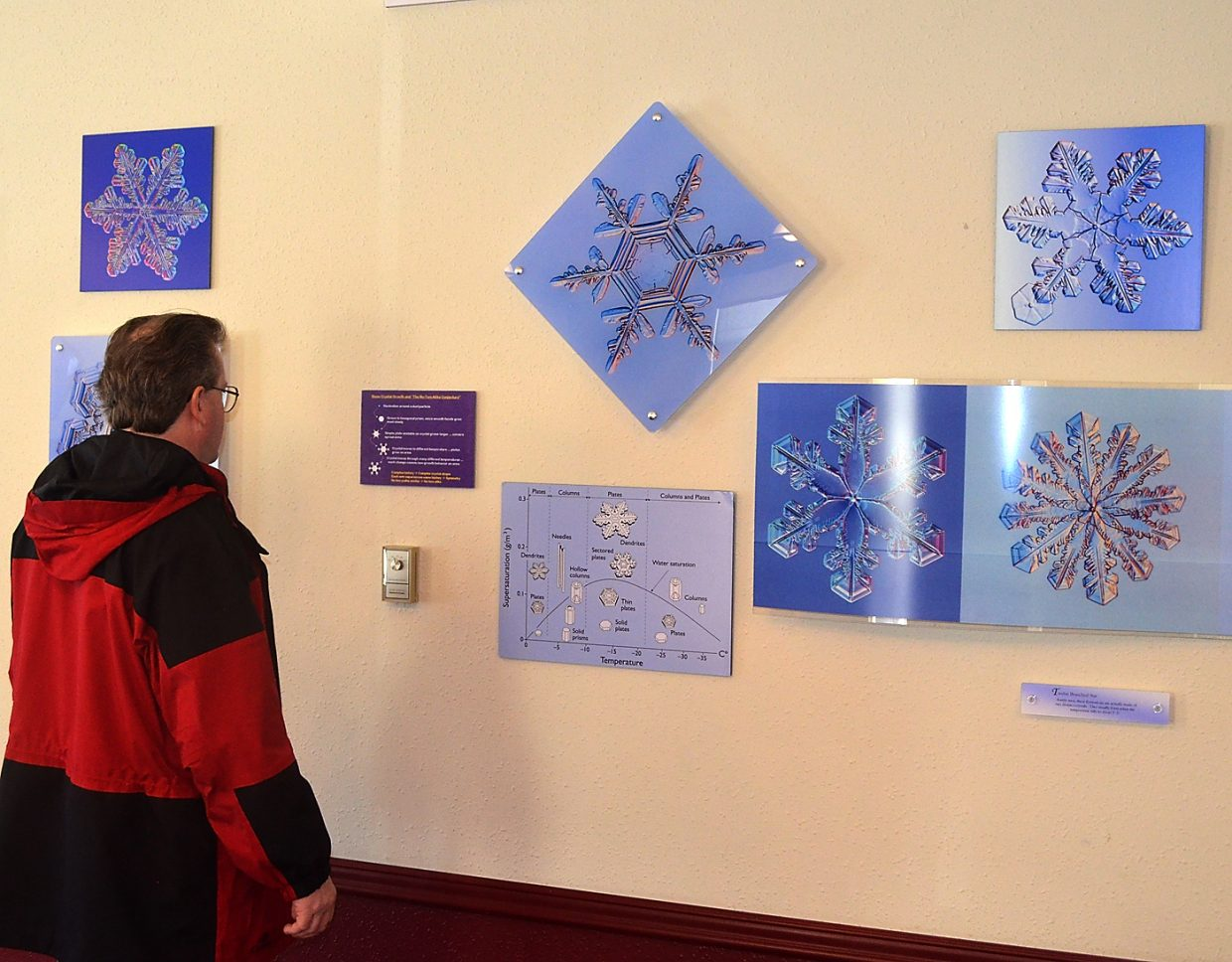 Lex Arnold, of Los Gatos, Calif., admires the snowflake photographs of Cal Tech physicist Kenneth Libbrecht on Friday at the Tread of Pioneers Museum in Steamboat Springs. The exhibit is open until April 10.