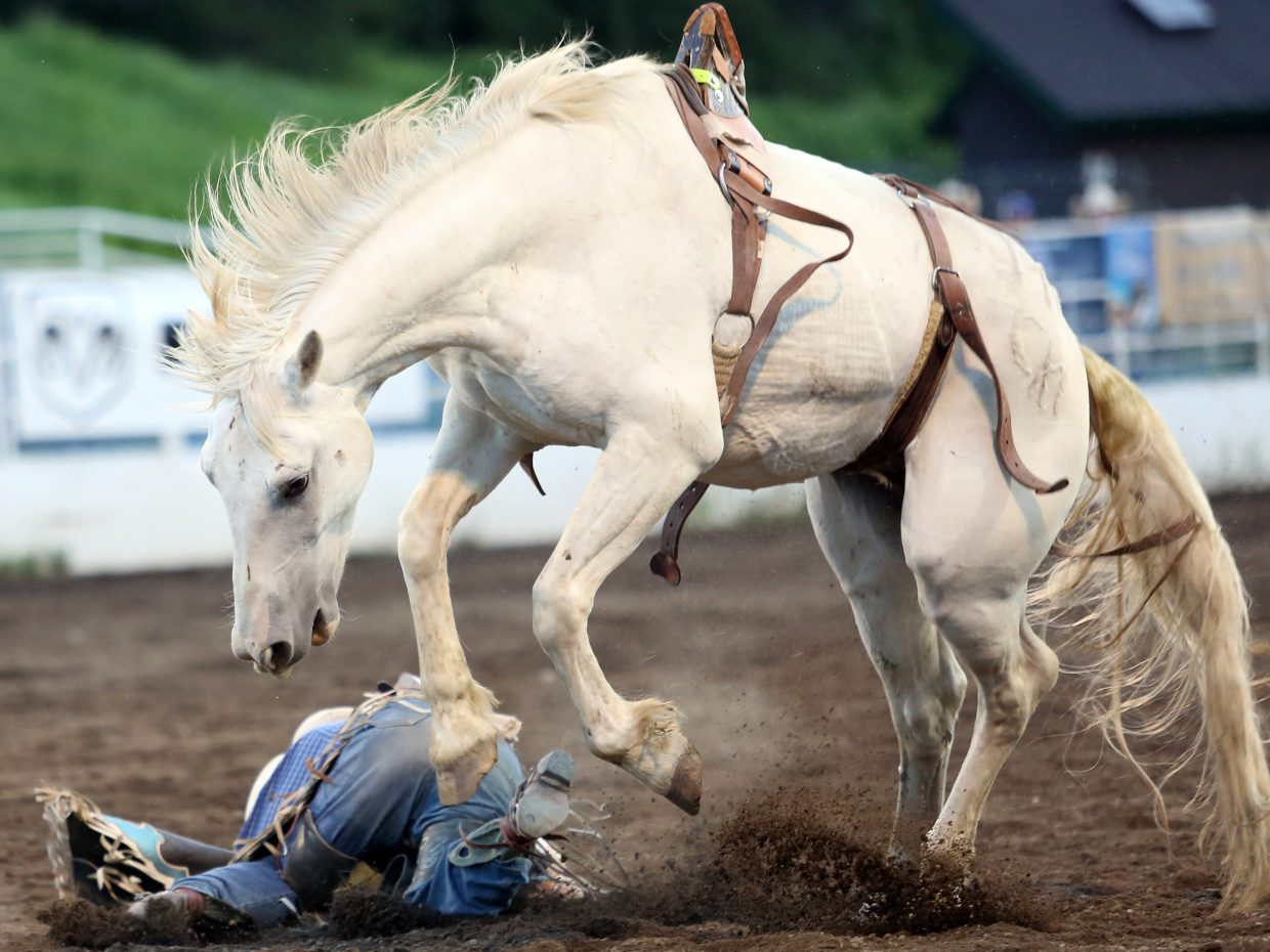Joel Schlegel, of Burns, tries to avoid his horse's hooves while competing in the bareback riding competition of Friday's season opening Steamboat Springs Pro Rodeo Series at Brent Romick Rodeo Arena in downtown Steamboat Springs.