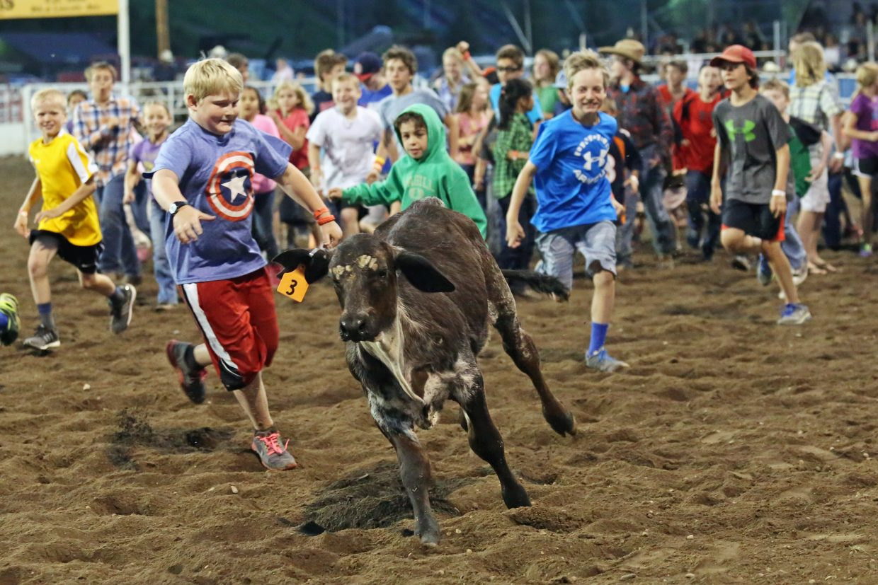 Children attempt to be the first to grab a tag off the back of a calf in a game during Friday's season opening Steamboat Springs Pro Rodeo Series at Brent Romick Rodeo Arena in downtown Steamboat Springs.