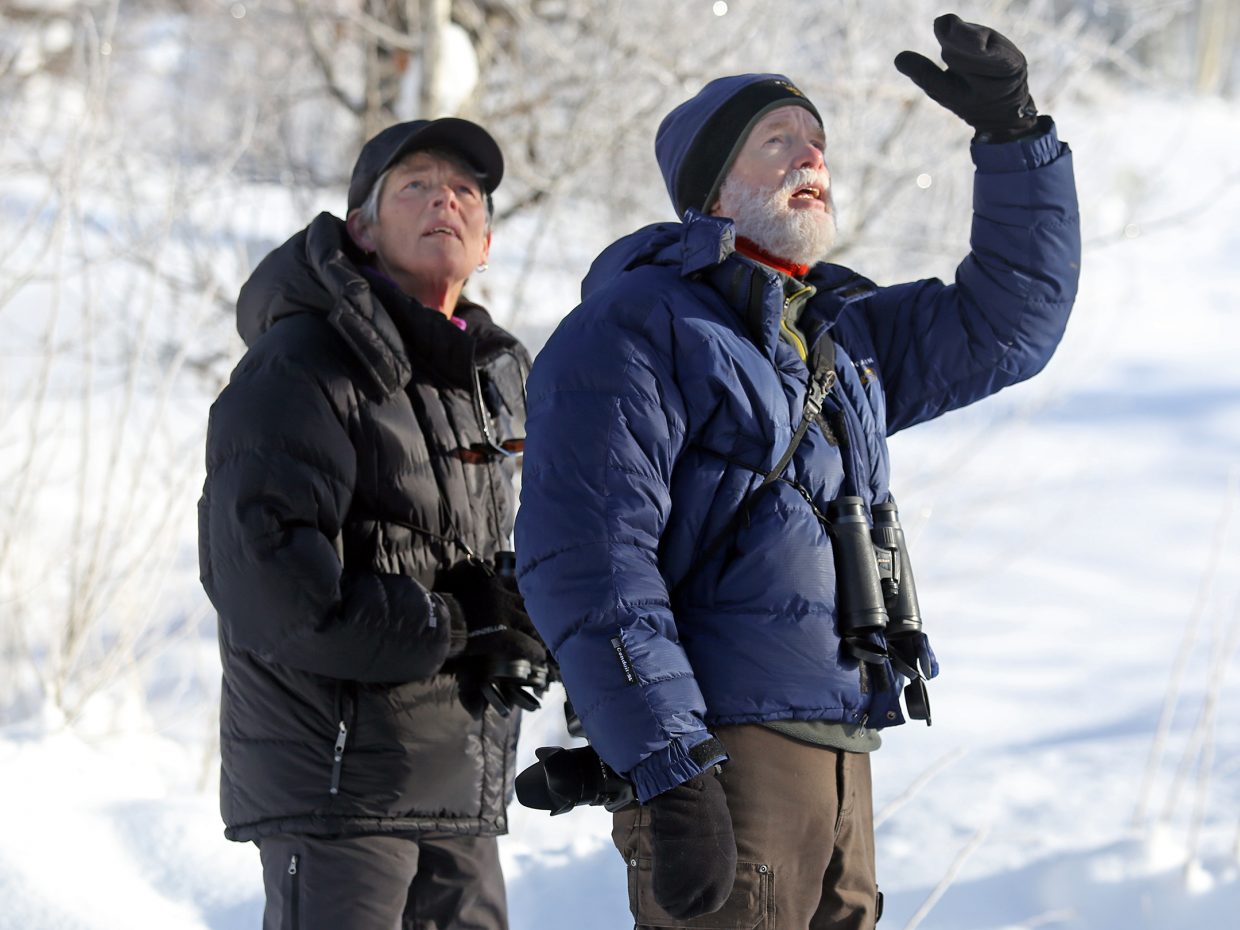 Steamboat Springs residents and devout birders Tresa and David Moulton take part in Saturday's ninth annual Christmas Bird Count. More than 2,800 birds were counted and identified over the weekend by around a dozen volunteers.