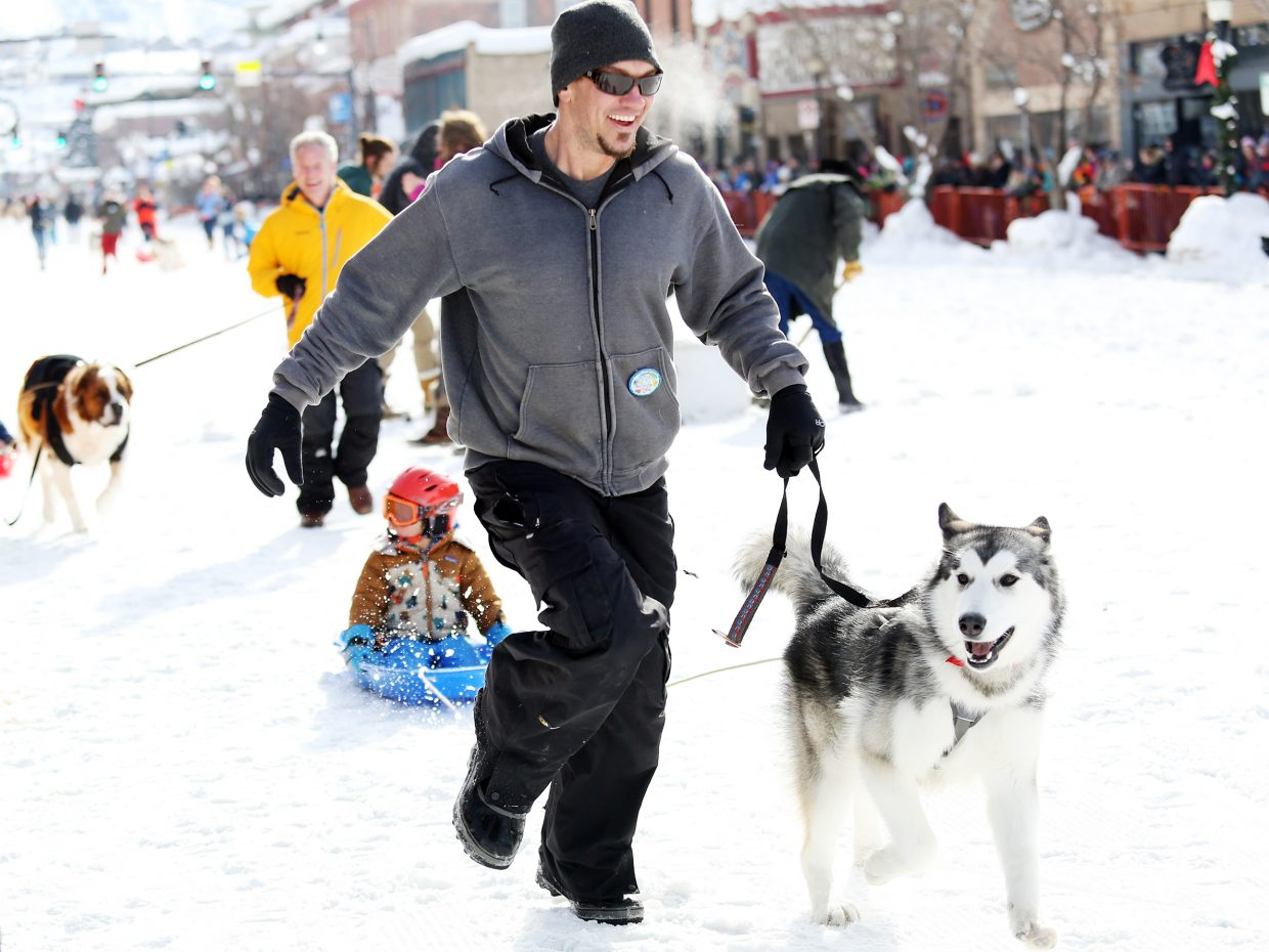Steamboat's Joe Bartasius, with the help of Canyon, leads young Kaiya Blakeslee during Sunday's 25-yard dog dash down Lincoln Avenue as part of the Winter Carnival.