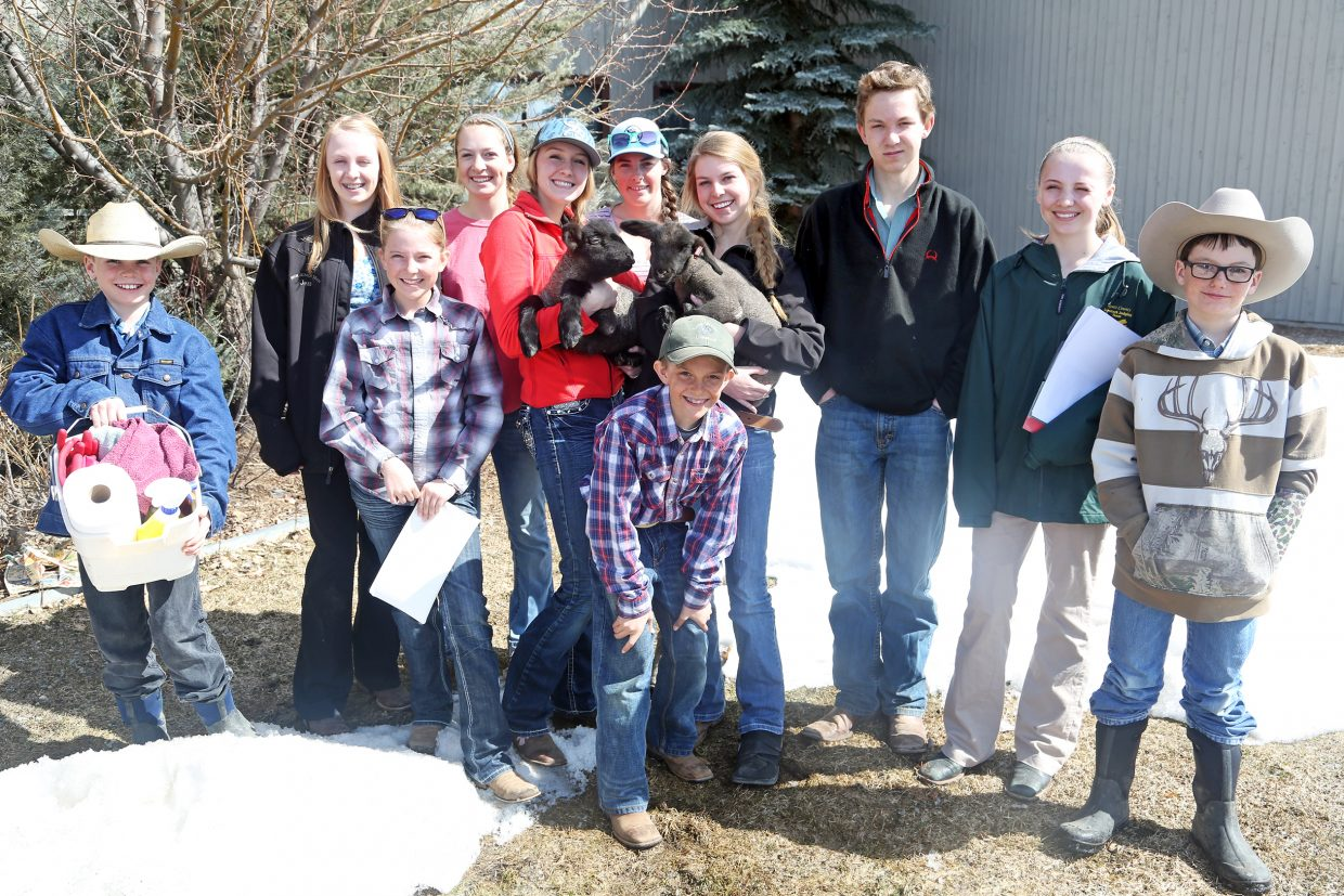 Members of the Routt County Livestock Judging team participated in a March fundraising drive. On Saturday, Oct. 1, Routt County 4-H Chapter will host a farm-to-table dinner from 4 to 7 p.m. at the I-Design Nursery in Phippsburg, and all proceeds will benefit the livestock judging team.