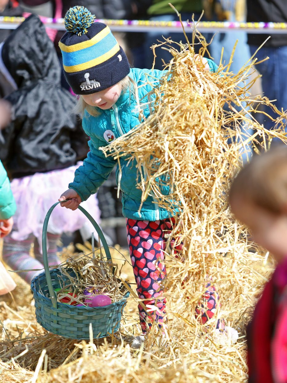 Bridgett McManus, 5, who splits her time between Steamboat Springs and Denver, removes a clump of hay in her search for Easter eggs Saturday during the annual Easter Eggstravaganza at the Steamboat Springs Middle School.