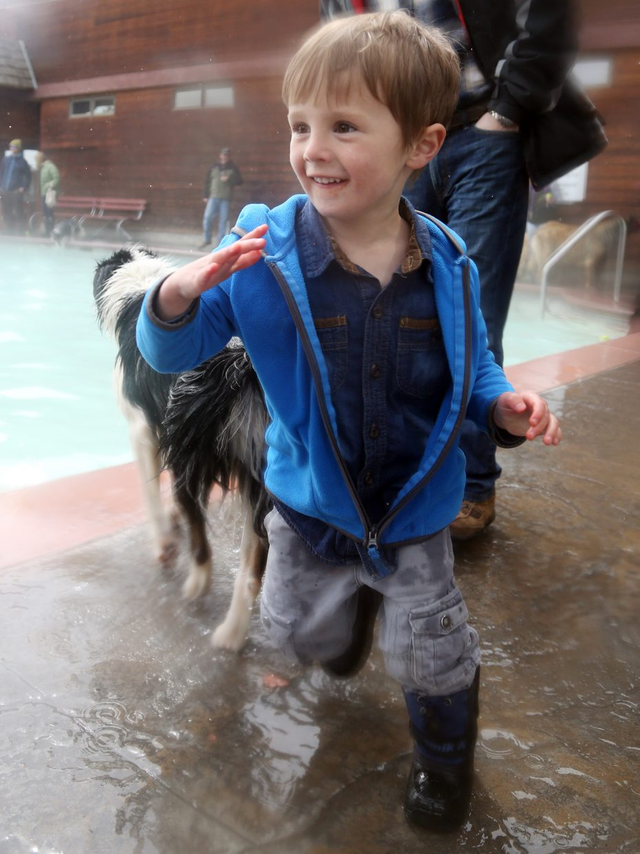Steamboat Springs resident Julian Guarnero, 4, makes his way through the throng of dogs enjoying Sunday's Poochy Paddle event at the Old Town Hot Springs pool.