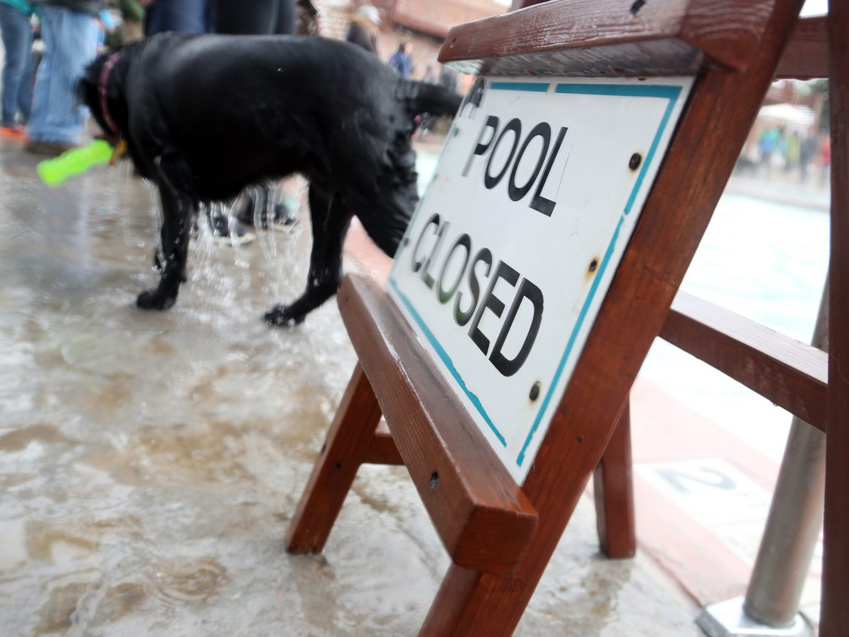 While the Old Town Hot Springs pool may have been closed Sunday for dog owners, their pets were able to enjoy the twice annual Poochy Paddle event.
