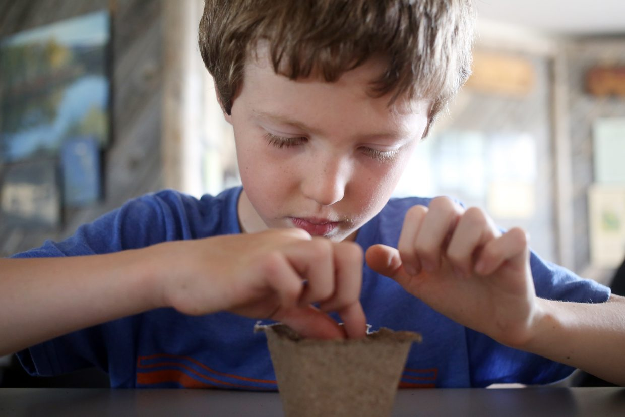 Sawyer Landers plants his flower seed, which the kids took home, Friday at Carpenter Ranch.