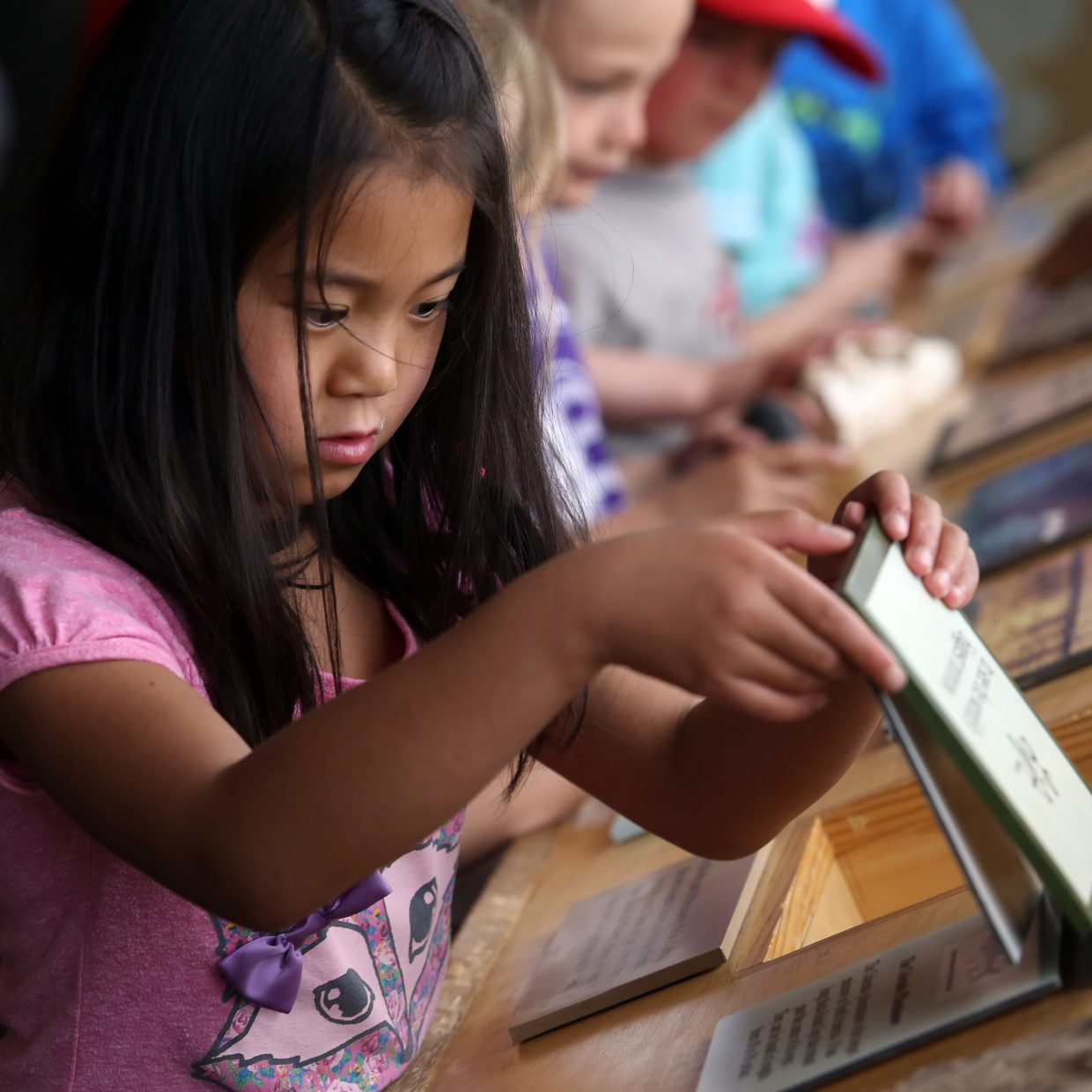 Samantha VanDerWerf looks through educational displays Friday at Carpenter Ranch.