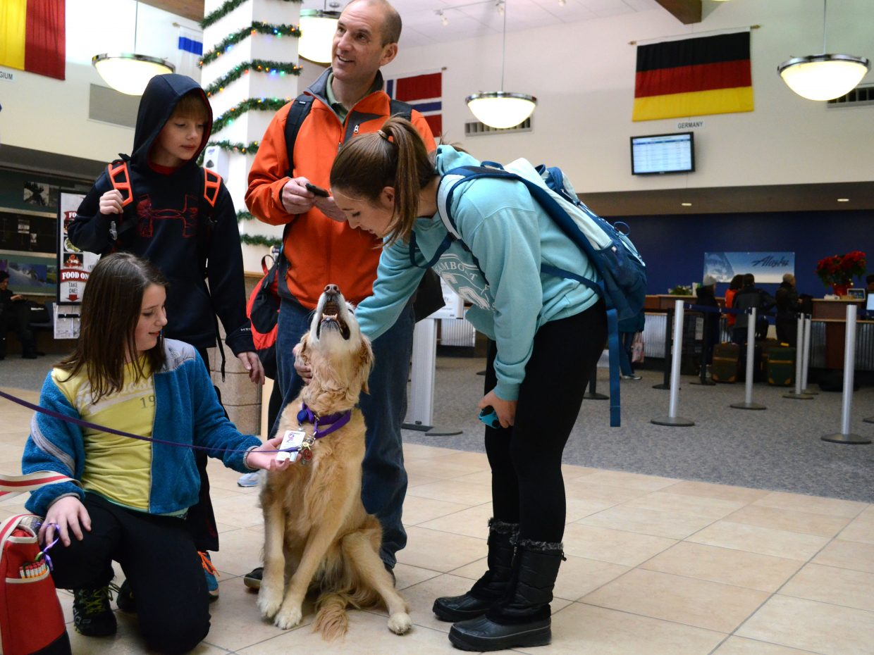 The Ames family enjoy Bingo's company before boarding their flight to head back to Atlanta. Bingo is part of Heeling Friends' new project, taking healing pups to the Yampa Valley Regional Airport to help ease the stress of travel.