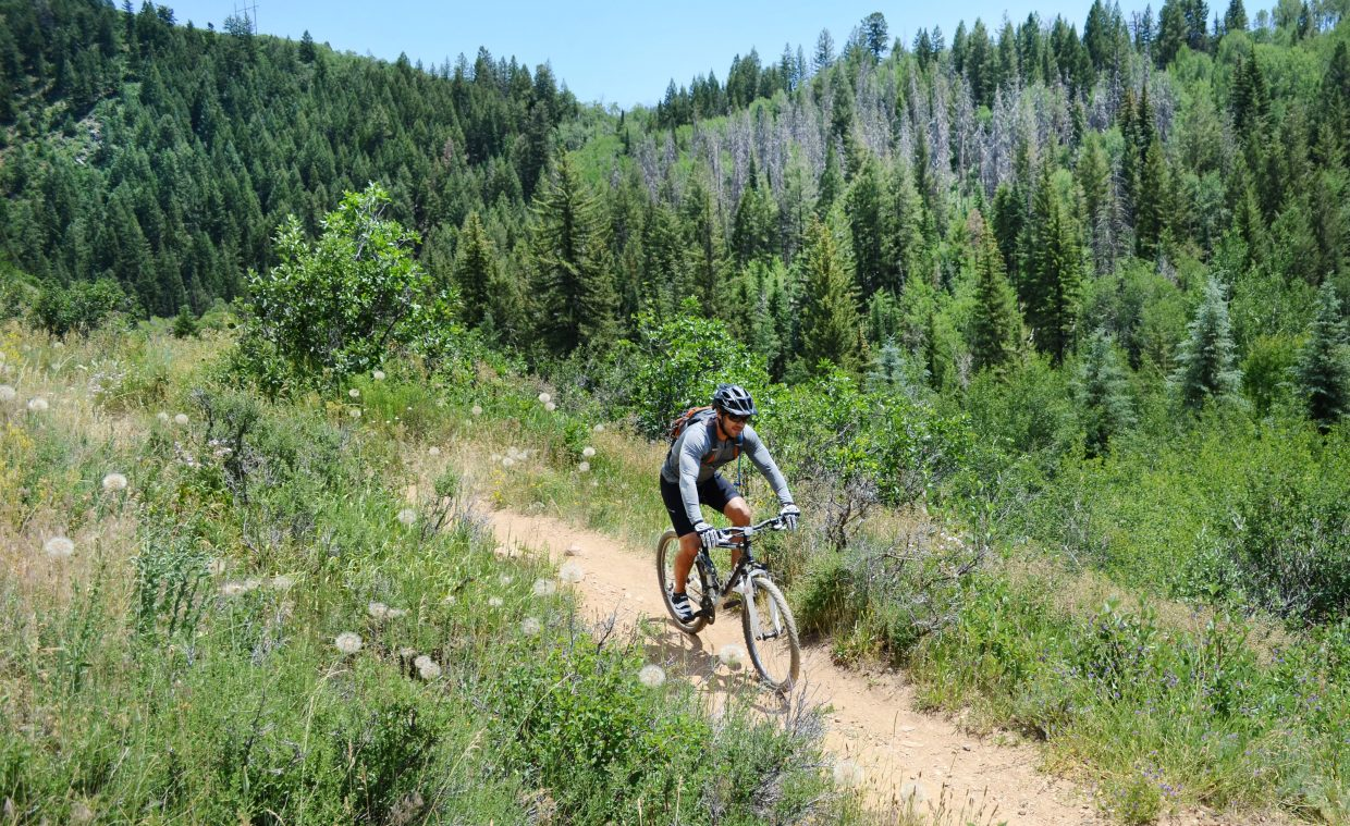 Don't let Mad Creek Trail's steep opening slope scare you away. After about 300 yards of climbing, the trail levels out, providing shady riding with the sounds of the creek in the distance.