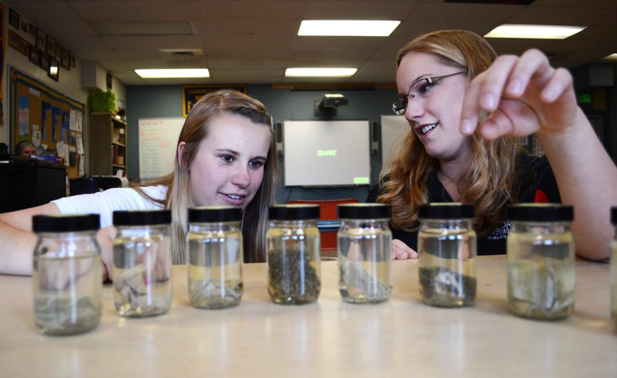 New Soroco agriculture certificate program concurrent enrollment teacher Meghan Munter, right, quizzes senior Belle Horn on rudiment stomach parts. The high school agriculture program received more than $186,000 in grants to launch the program that will help students be more workforce ready and gain college credits early.