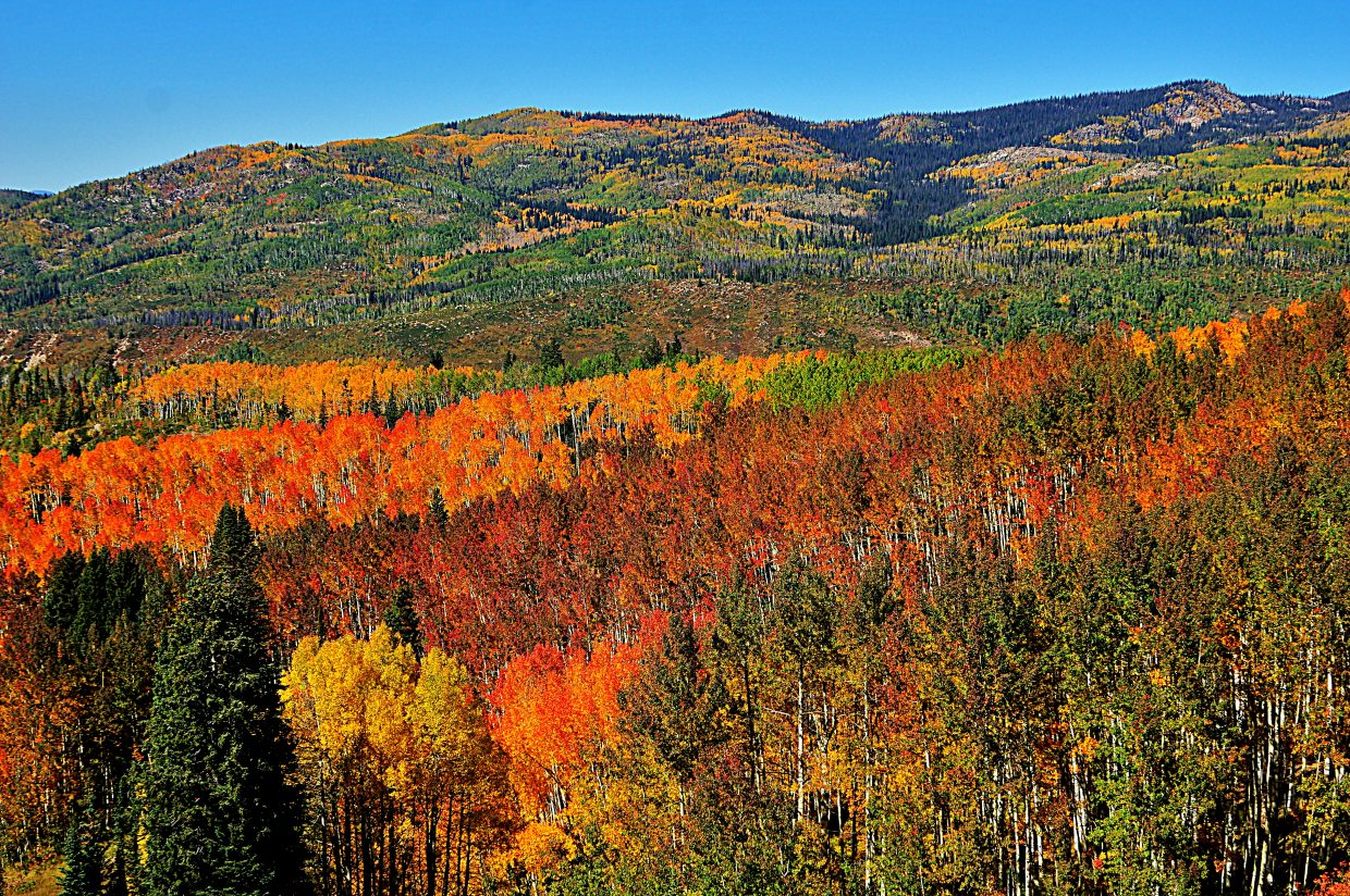 All the colors of the rainbow on Buff Pass. Submitted by: Matt Helm