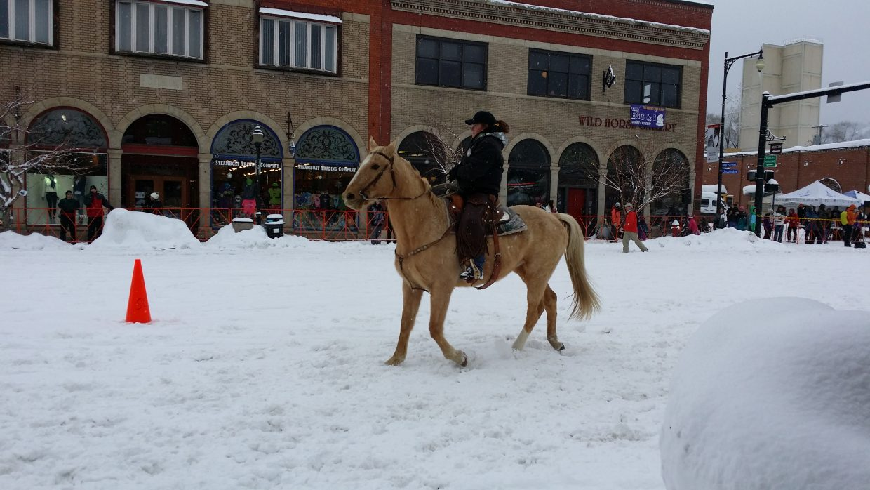 A horse during the Winter Carnival street events. Submitted by Jane Connor.