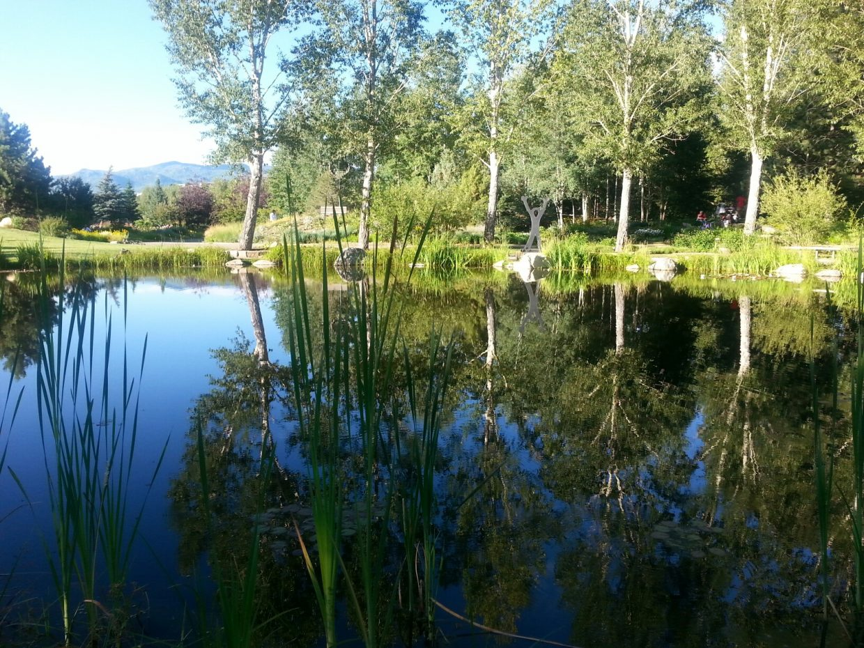 Beautiful evening at Yampa Botanical Garden. Submitted by: Anne Wuerslin