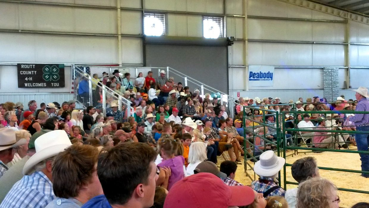 100th annual Routt County livestock auction participants. Submitted by: David Torgler