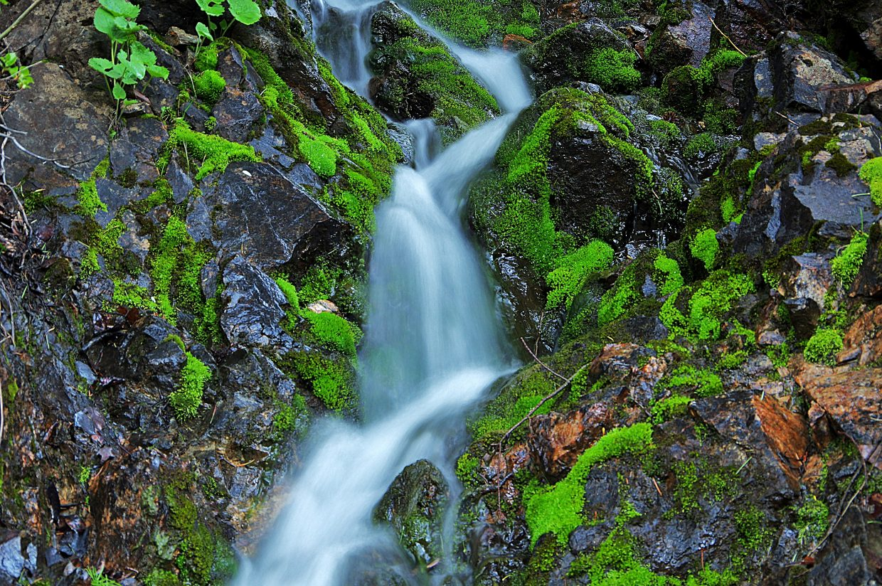 The small stream on the way down to Fish Creek Falls. Submitted by Matt Helm.