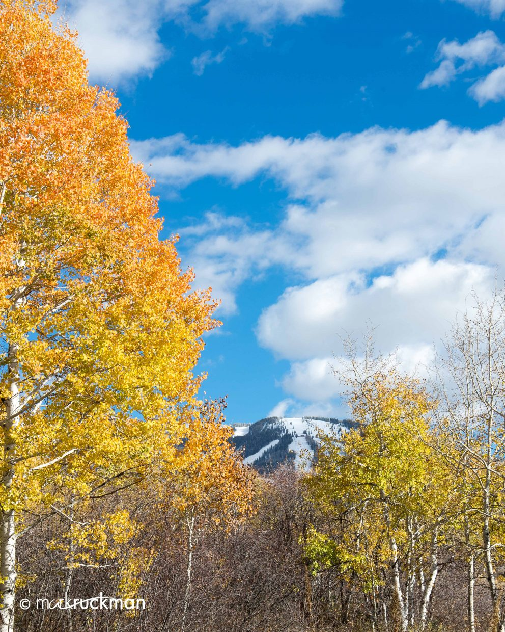 Fading fall colors around Steamboat. Submitted by: Mark Ruckman