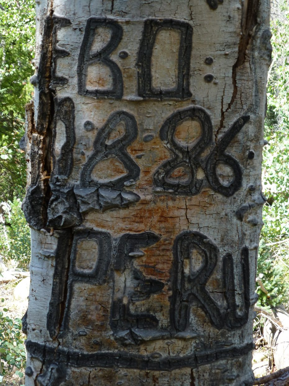 Carved tree along the Wyoming Trail. Submitted by: Gail Hanley