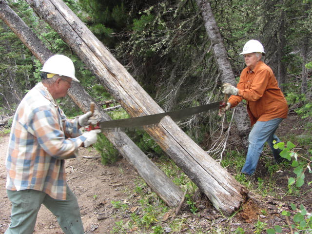 Friends of Wilderness volunteers Robert and Denise Scifres utilize a crosscut saw rather than a chainsaw while clearing fallen trees from trails in keeping with the prohibition of motorized equipment in designated wilderness areas.