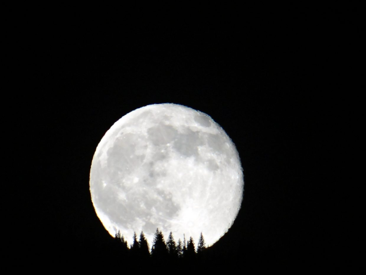 Friday the 13th Full Moon. Submitted by: Ann Hogan