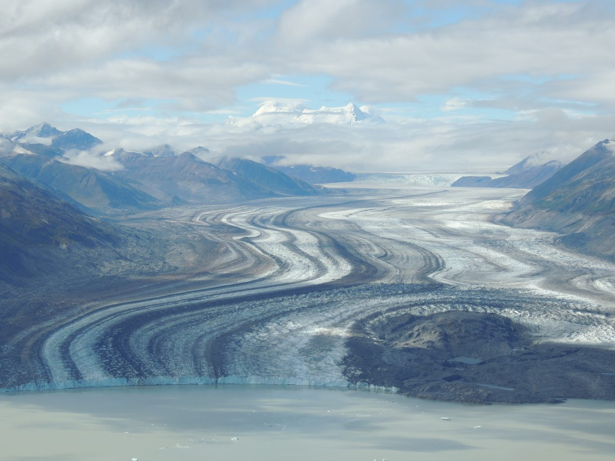 The Lowell Glacier flows out of the Icefield Range as part of the largest non-polar icecap in the world. The curvy stripes of its moraines are indicative of a surging glacier. Its most recent surge occurred in 1997 when it heaved three-quarters the way across the lake. Its last full blockade of the river came in 1952.