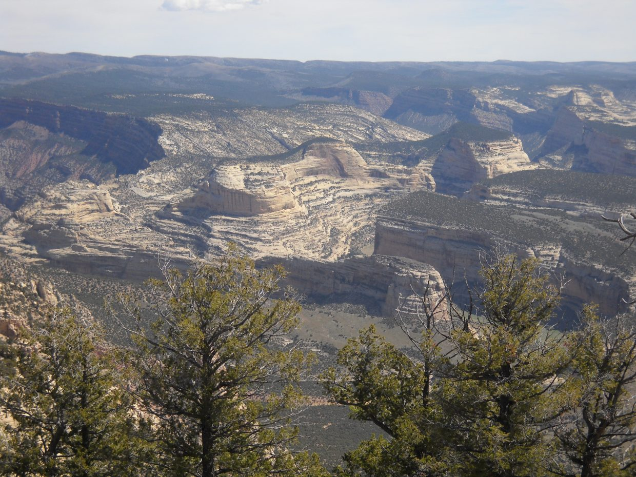 Springtime at Dinosaur Monument. Submitted by Shelly McGhan.