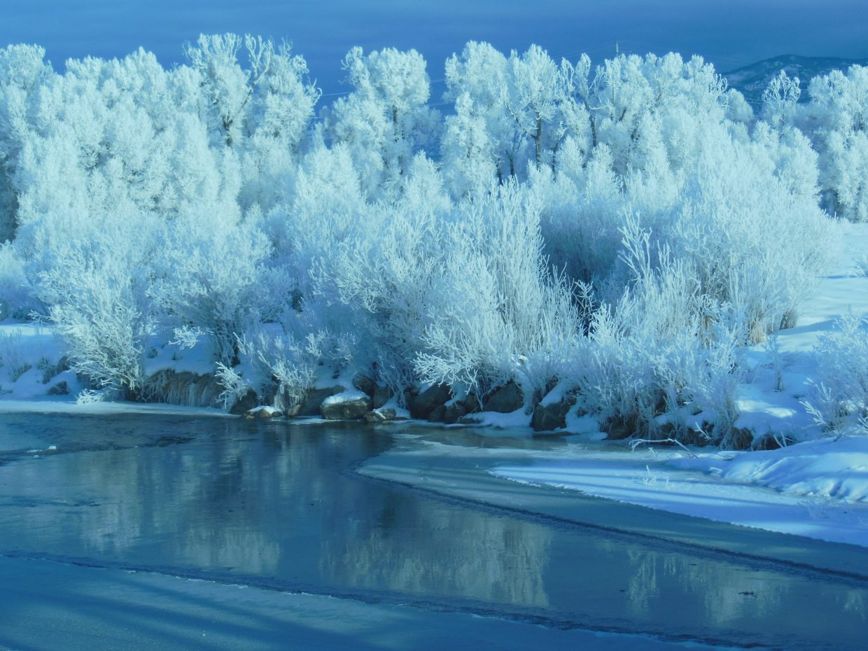 Yampa River and trees covered with frost. Submitted by: Tomas Stone