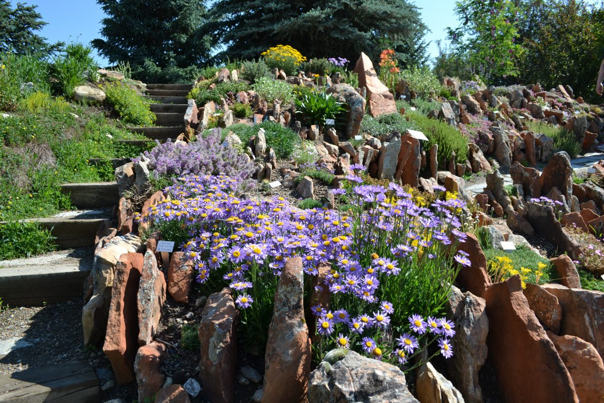 The Crevice Garden at Yampa River Botanic Park is in full bloom for conference attendees this weekend.