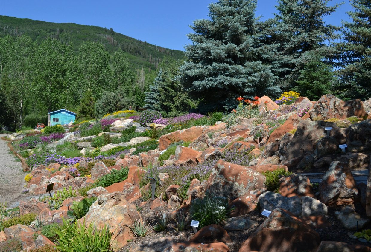 A view of the Crevice Garden with the Members Rock Garden in the background, which is the largest garden in the park.