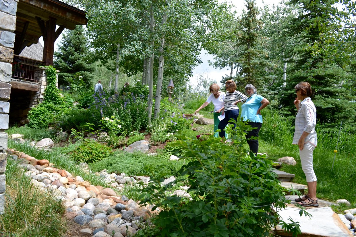 Members of the Strings Guild talk about different plants growing at a home off of Buffalo Pass Road.