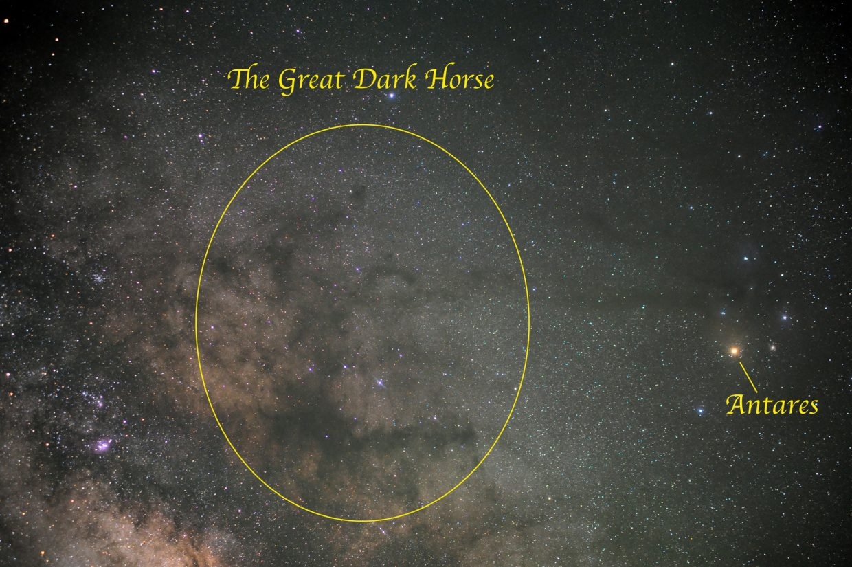 Can you find the Great Dark Horse in the Milky Way? Formed from dark, obscuring dust clouds far off in space, he is reared back on his hind legs with his front legs in the air. Look due south for the Great Dark Horse at about 11 p.m. this week, not far from the bright red giant star Antares.