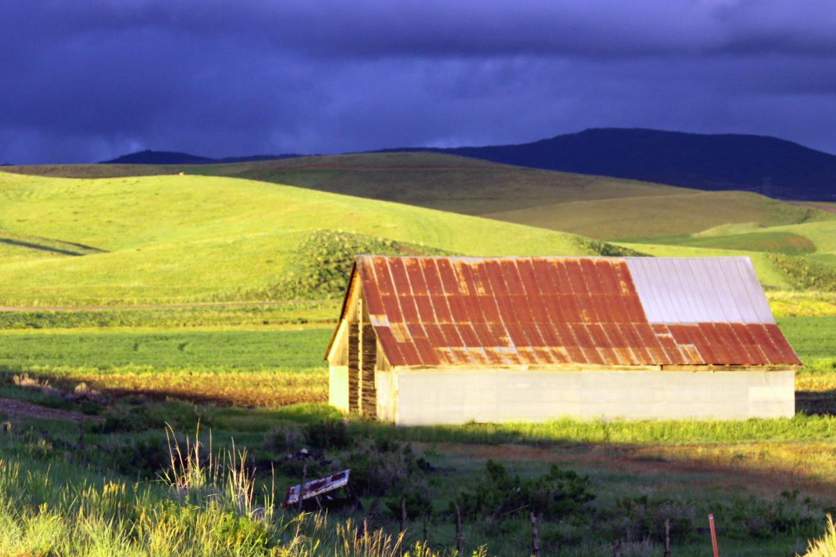 Dark clouds, green hills, rusted roof. Submitted by: Richard Hagins