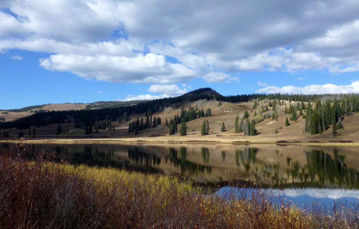 Dumont Lake with reflections. Submitted by: Gail Hanley