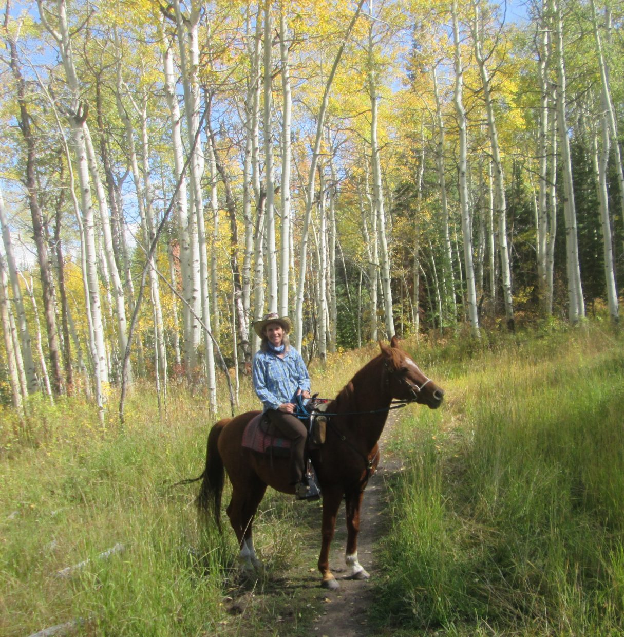 Horse riding on Emerald Mountain. Submitted by: Nancy Roberts