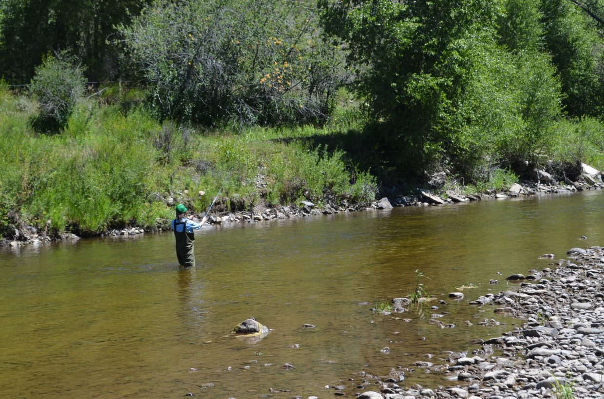 Audrey Dwyer tests a few areas of the river getting comfortable casting and finding her rhythm.