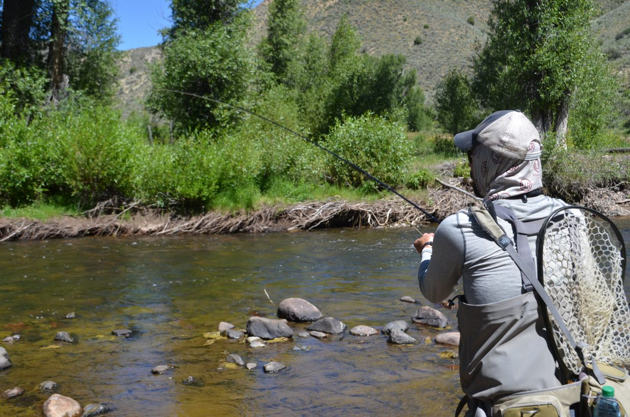 Andy Radzavich from Brooklyn Outfitters was arts and entertainment reporter Audrey Dwyer's guide last week for her first fly fishing experience.