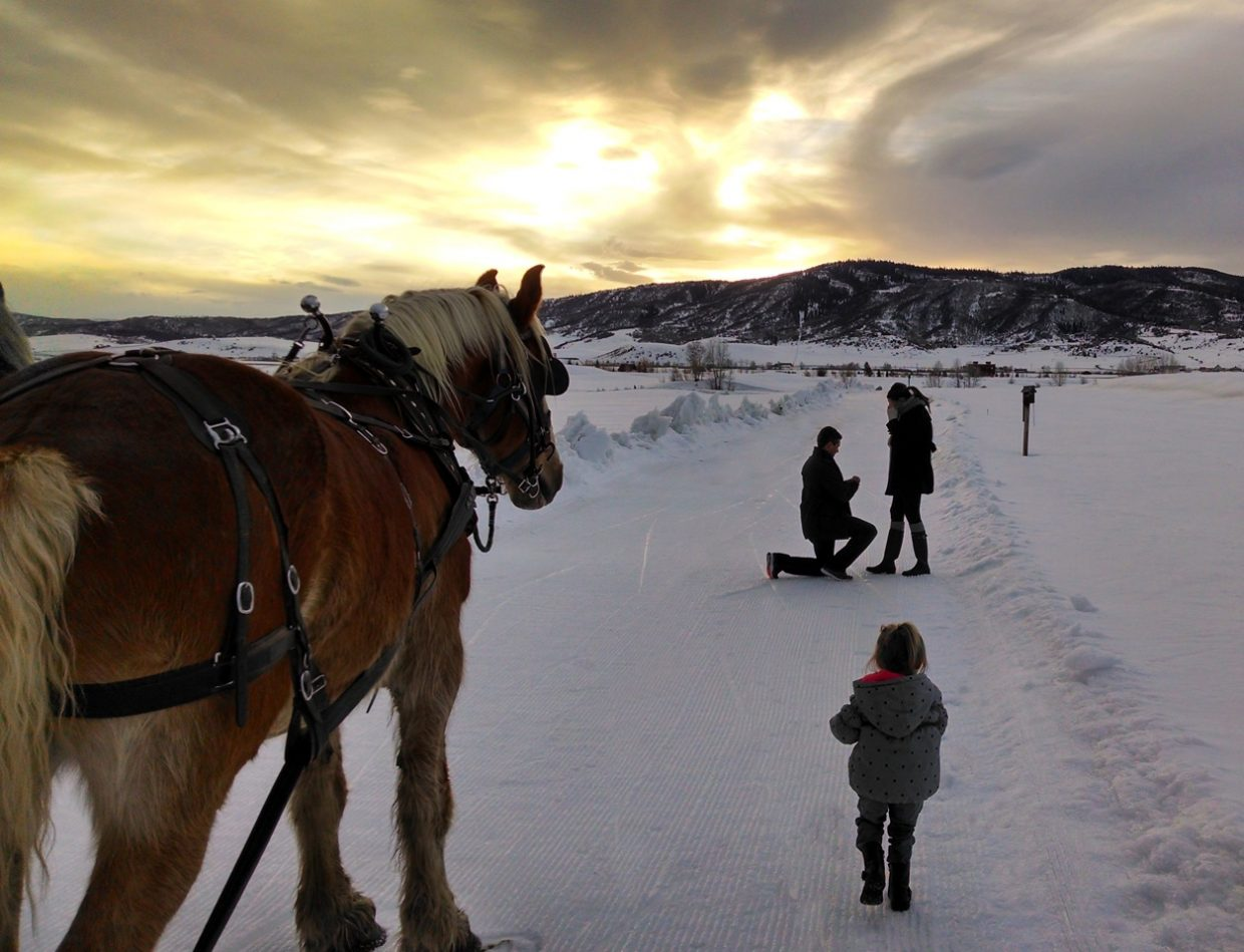 Engagement photo for Gavin Berry and Ali Simmers, during a sleigh ride at Haymaker Golf Course. Submitted by: Alison Simmers