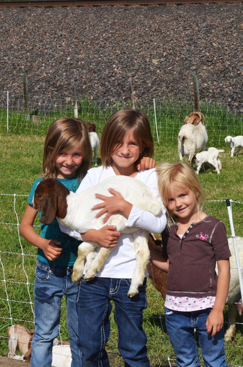 """Three of Jerad and Lane Iacovetto's daughters, from left, Kiley, 5, Makayla, 8, and Lexi, 4, (Josie, 5 months, was napping) hold one of four quadruplet kids born to a nanny goat on their ranch this spring. The girls named the goats Elsa, Anna, Olaf and Sven after characters in the movie """"Frozen."""" That's Elsa in the picture. Or is it Olaf?"""