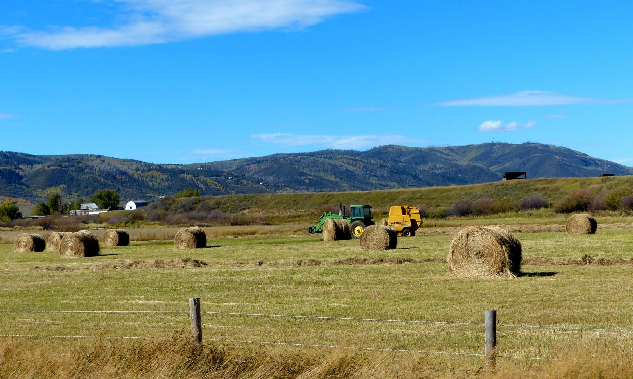 Hay is being harvested in Steamboat. Submitted by: Shannon Lukens
