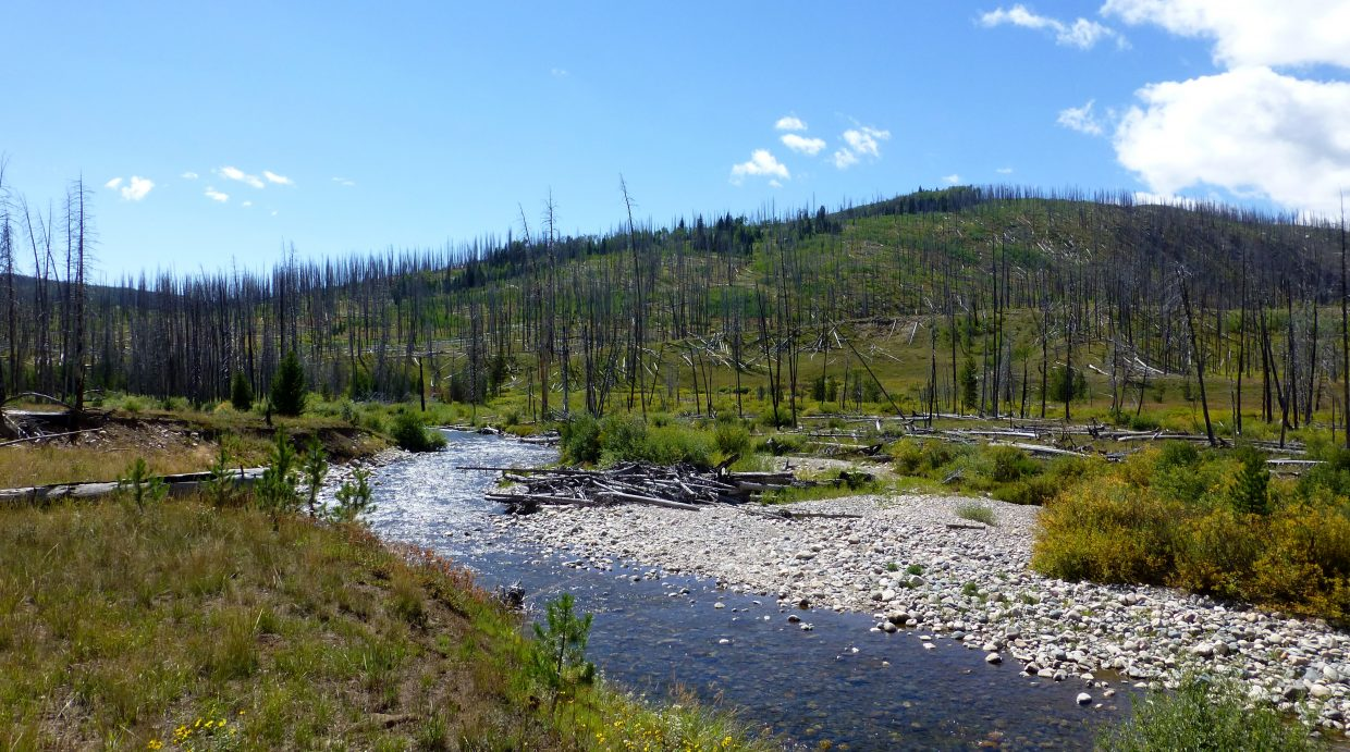Hiking the Wyoming Trail off Seedhouse on Sunday. Submitted by: Gail Hanley