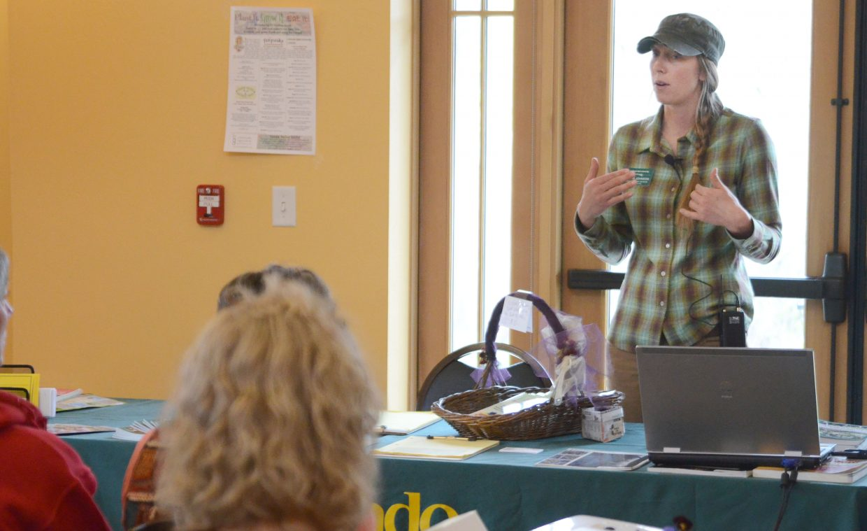 Master Gardener Britni Johnson gives a presentation on essential garden tips Saturday morning at the Steamboat Springs Community Center for the Home and Garden Expo.