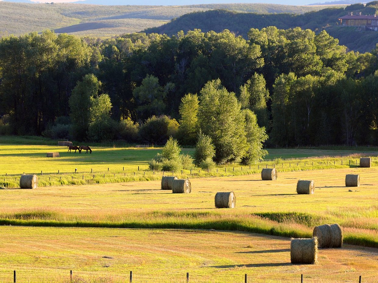 Hay season in Steamboat. Submitted by Jeff Hall.