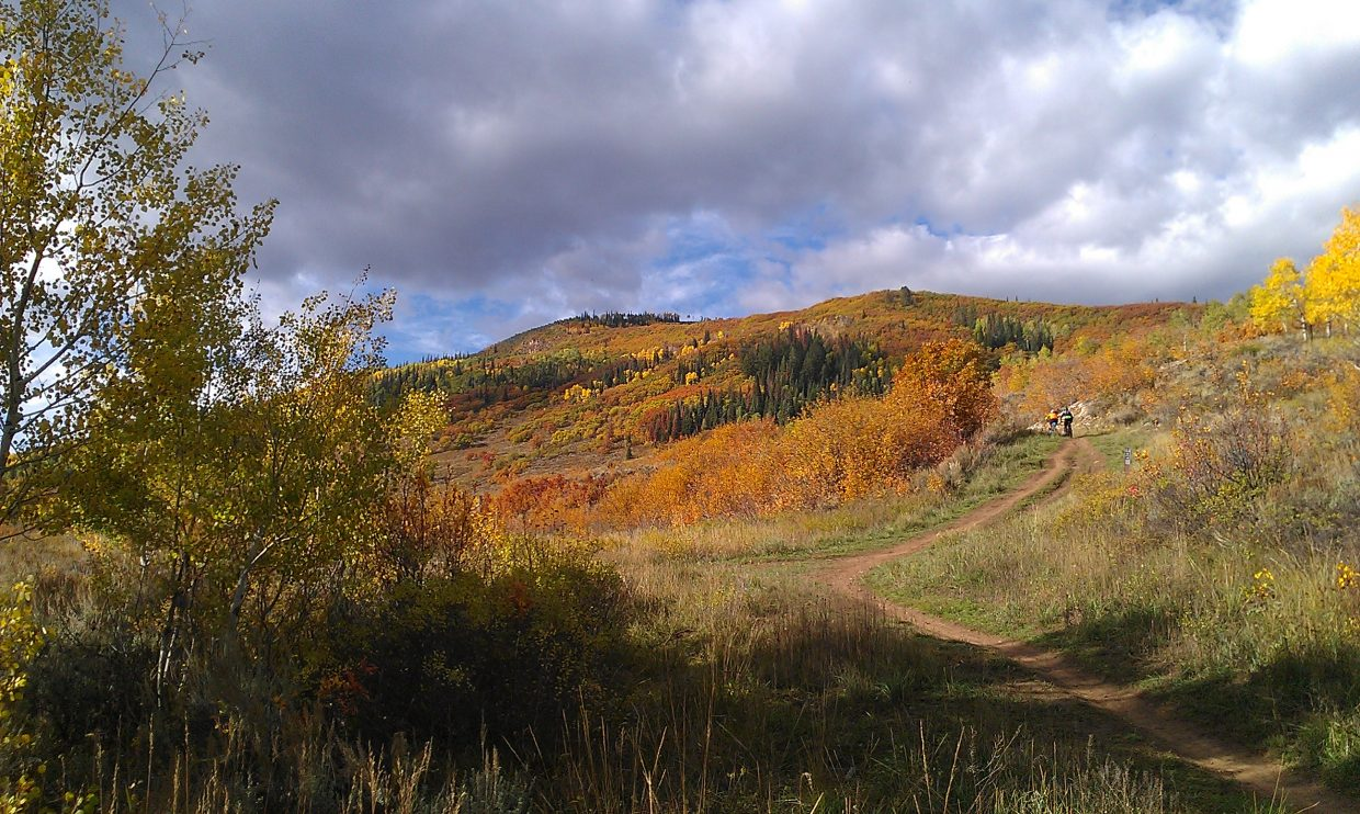 Two mountain bikers enjoying the fall splendor of Emerald Mountain. Submitted by: Kristen Rockford