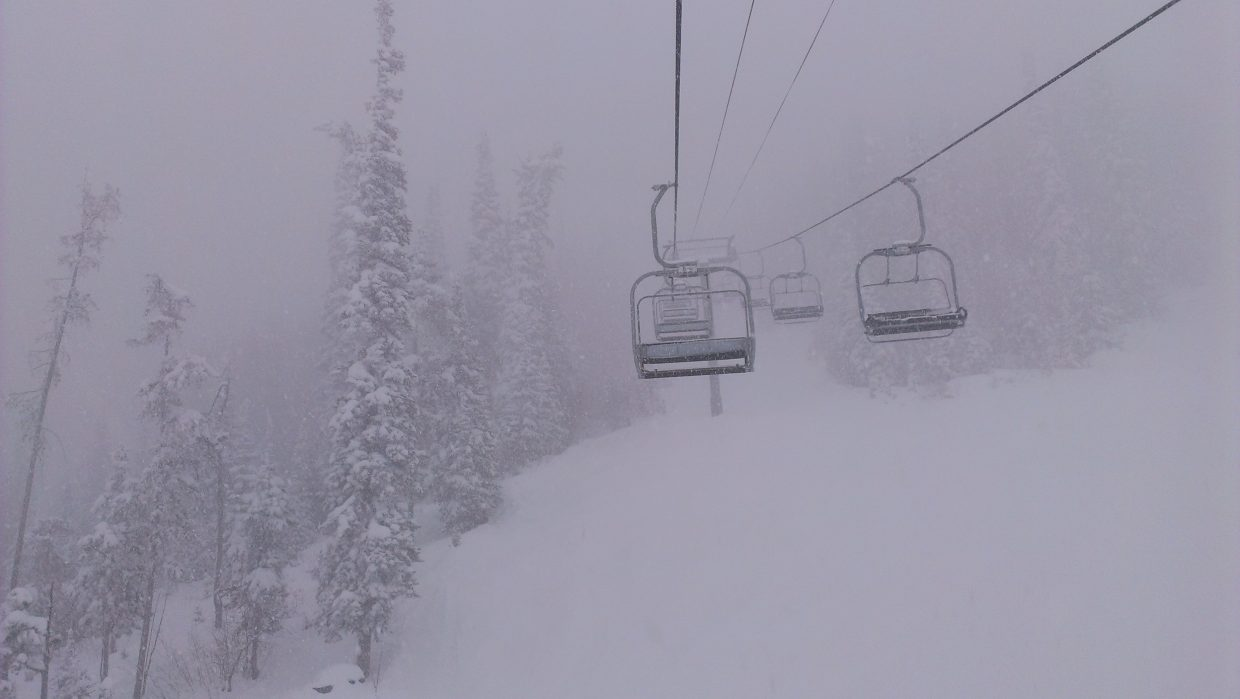Another busy morning Tuesday on Burgess Creek. Snowing so hard the sun almost went dark. Submitted by: Sam Daniels