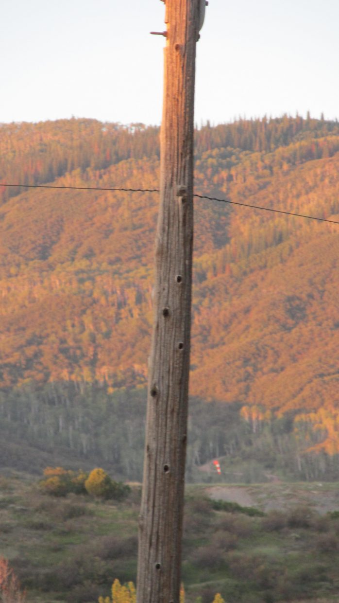 An old power line, to Copper Ridge. Submitted by William James Dorr.