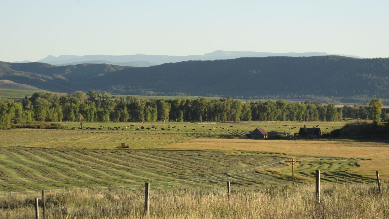 A lonely machine goes around a meadow, hay season on the lower Elk River Valley. Submitted by Bill Dorr.