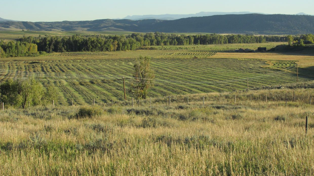 Hay season on the lower Elk River Valley. Submitted by Bill Dorr.