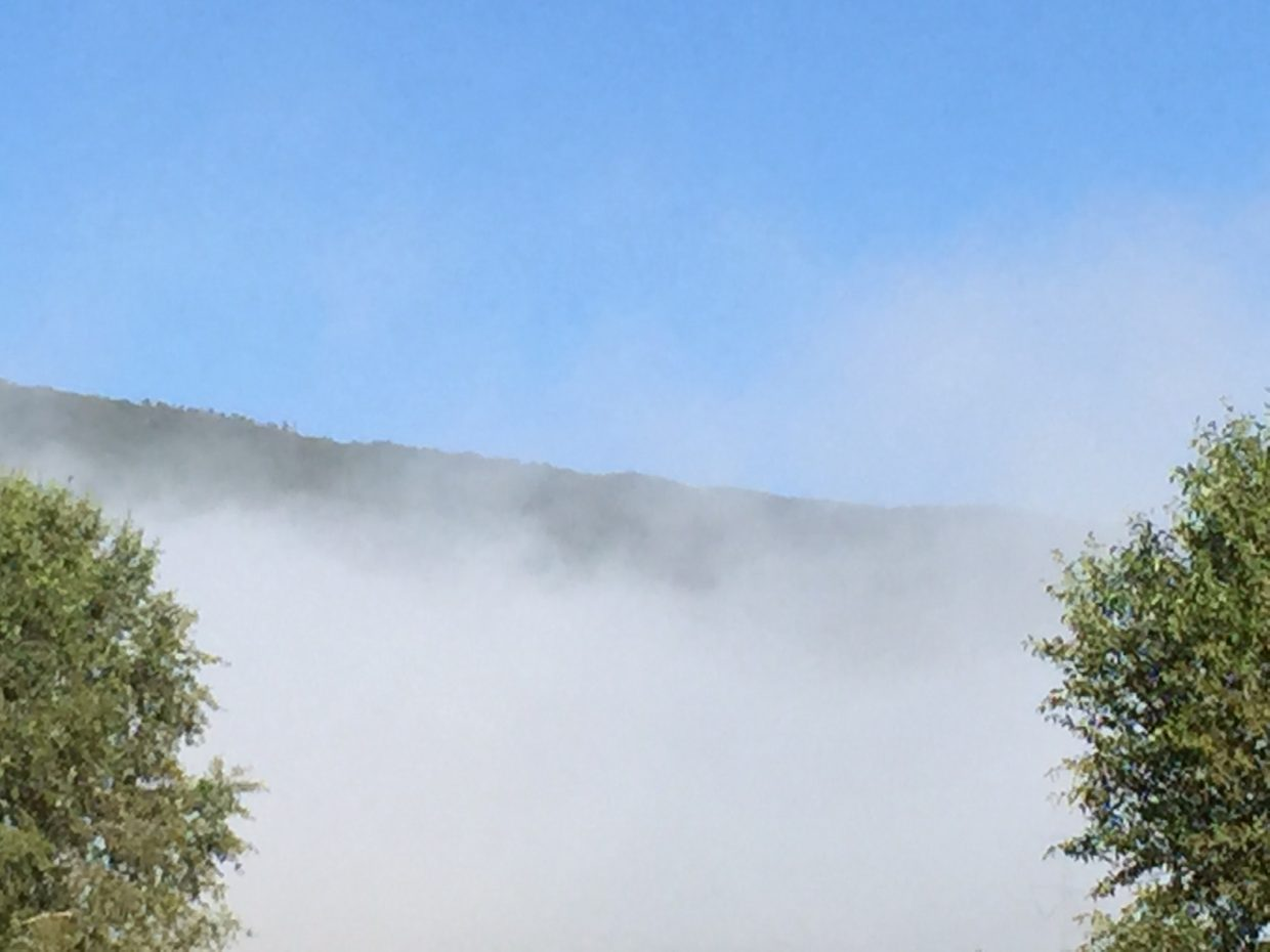 Morning fog. Submitted by Tina Weintraub.