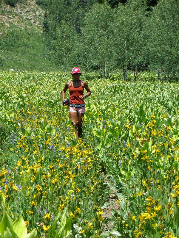 Running along wild daises at Swamp Creek Trail. Submitted by Jess Soco.