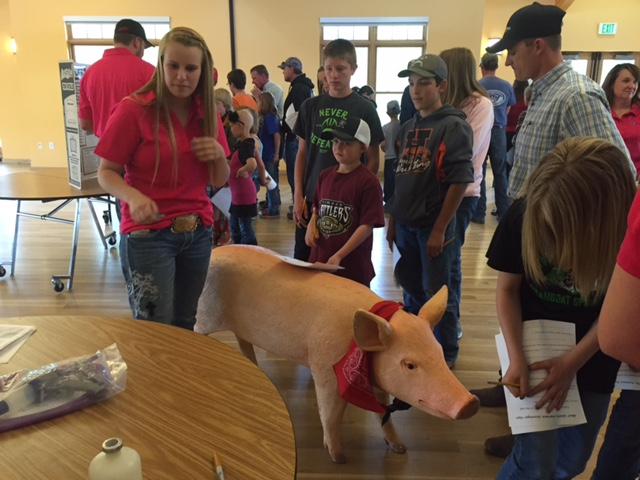 We had a very successful MQA, Meat Quality Assurance training for our 4-H members. Submitted by Tami Eggers.